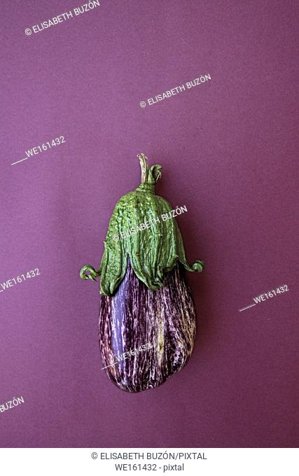 Eggplant with white fur on white background