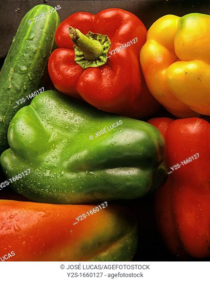 Peppers and cucumbers, Andalusia, Spain