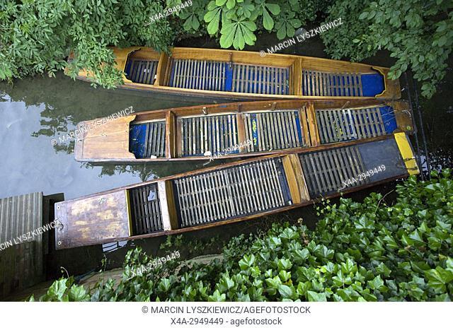 Tree boats