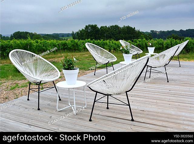 Wine tourism, Vineyards in begining of July, Belvès-de-Castillon near Coutras, Bordeaux wine region, Gironde department, Département Gironde, region Aquitaine