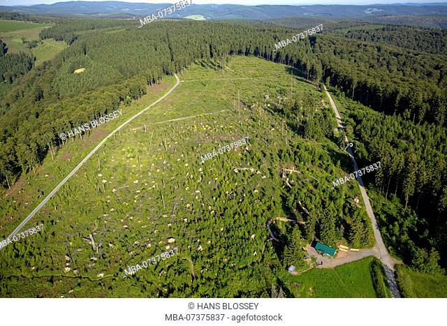Aerial photo, ski jump with Kyrill path, Schmallenberg, Hochsauerland (district), North Rhine-Westphalia, Germany