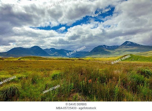 Summer, meadow, mountains, Loch Tulla Viewpoint, highlands, Scotland