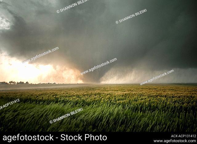 Big wedge tornado near Chapman Kansas United States
