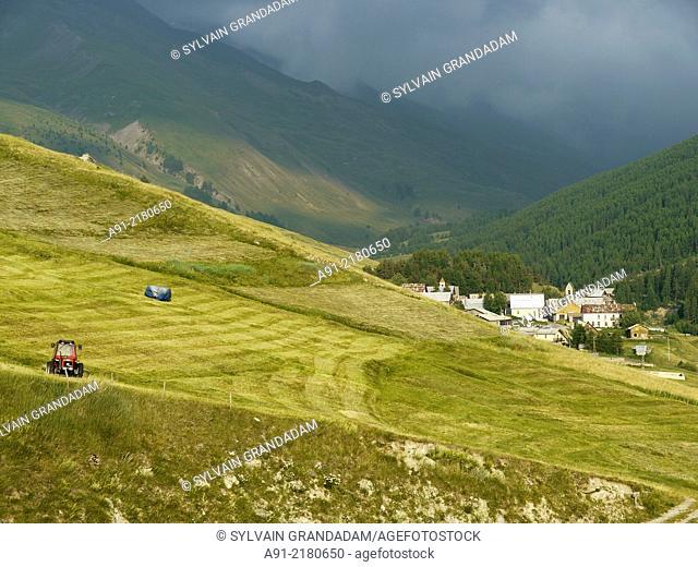 France, Hautes-Alpes department, Queyras natural park