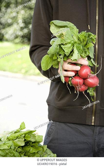 Man holding bunch of radishes