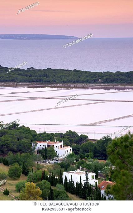 Estany des Cavallet. Parque natural de Ses Salines s' Eivissa i Formentera. Ibiza. Illes Balears. España