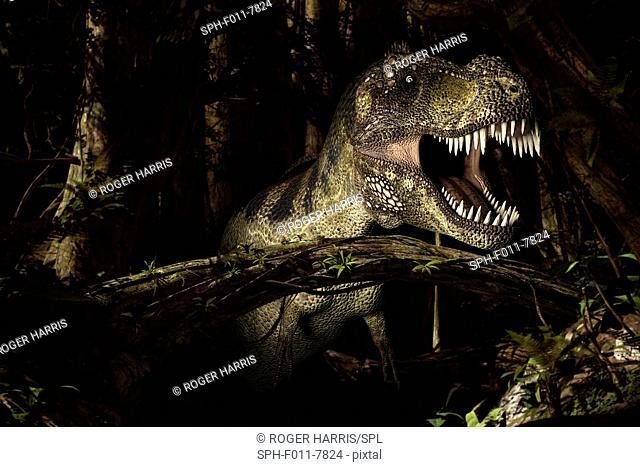 Tyrannosaurus rex, computer illustration