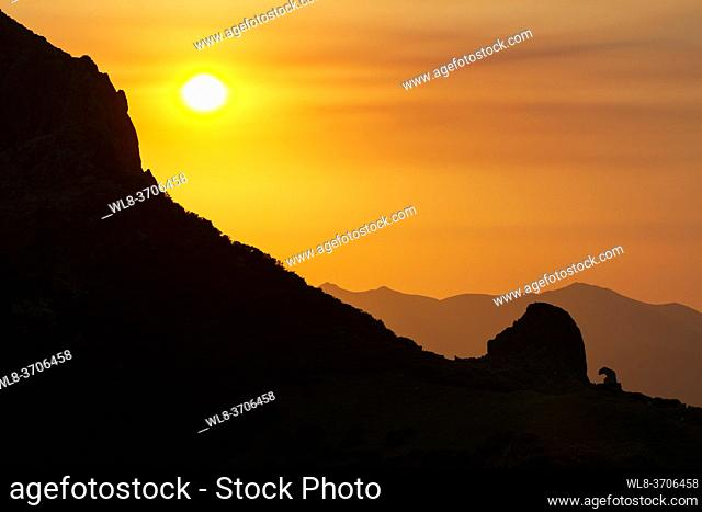 Sunrise in the mountains of the Picos de Europa in Asturias and Cantabria next to the Llesba lookout with a bear statue