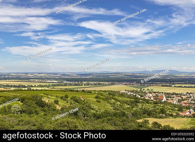 Vineyards near Polesovice, Southern Moravia, Czech Republic