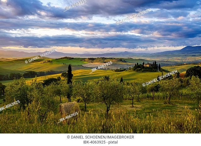 Sunrise, landscape with farmhouse and cypress trees, near San Quirico d'Orcia, Val d'Orcia, Province of Siena, Tuscany, Italy