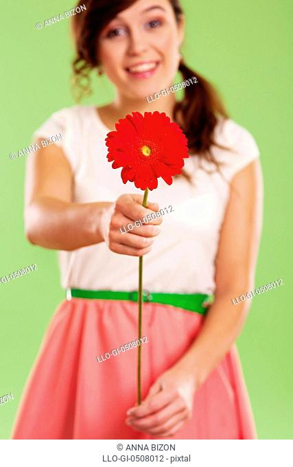 Young woman showing a red gerbera Debica, Poland
