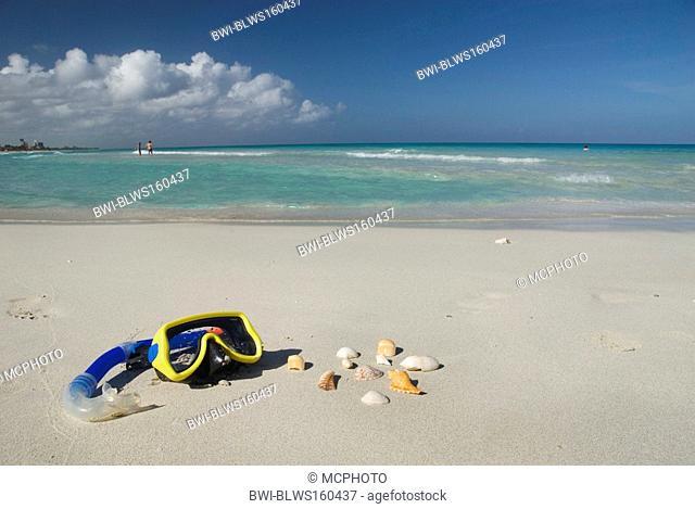 diving goggles and mussel shells on the beach, Cuba, Caribbean Sea, Varadero