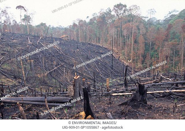 FOREST FIRES, INDONESIA. Sumatra, Nr Bukit Tigapuluh. 11/97. Burning the rainforest to clear land for oil palm plantations.
