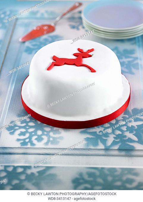 Pastel de Navidad / Christmas Cake