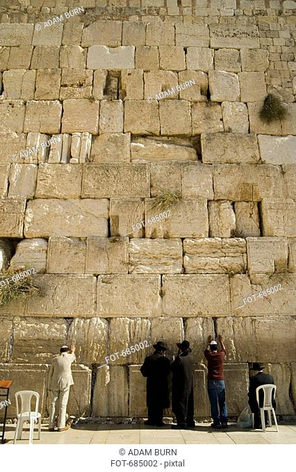 Five men praying at the Wailing Wall, rear view