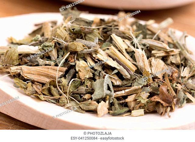 Close macro view of basil tea in the spoon