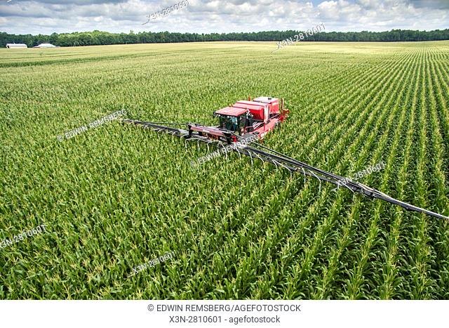 An aerial view of an air seeder working its way through rows and fields of cover crops, turning these crops into corn