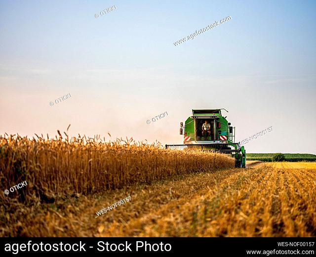 Combine harvesting field of wheat