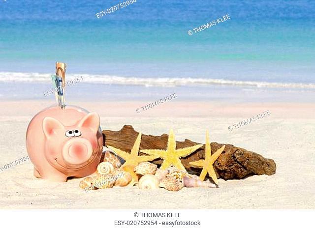 Sparschwein, Muscheln und Treibholz am Sandstrand