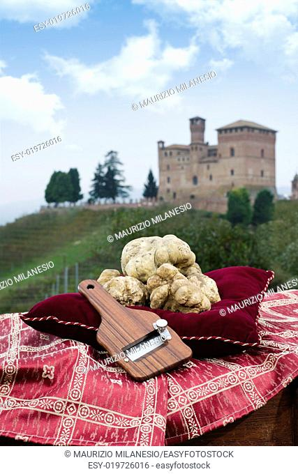 Still Life the White Truffles from Piedmont and size truffles, with views over the vineyards and the castle of Grinzane Cavour