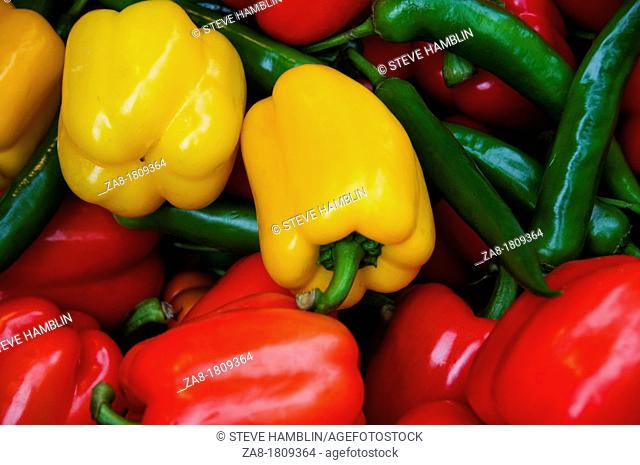 Selection of perfect green yellow red peppers in open air market