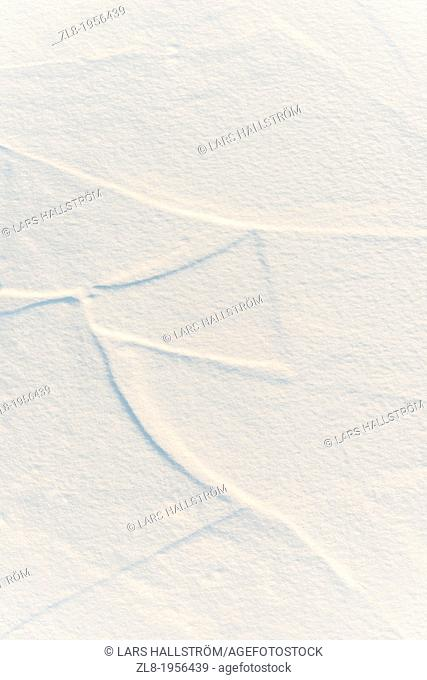 View from above of fresh snow covering ice sheets. Stockholm, Sweden