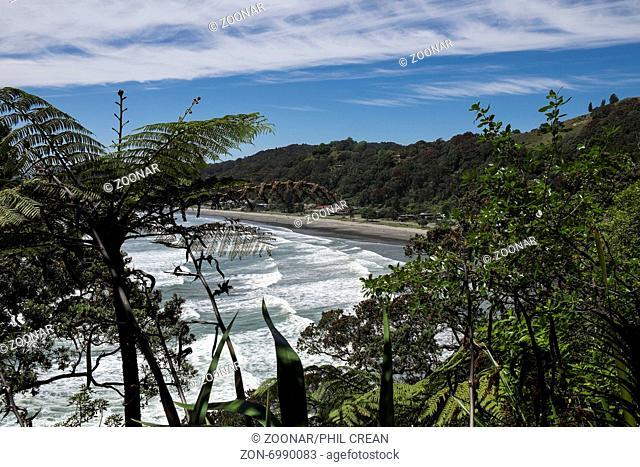 Overlooking the beach and coastline at Whakatane in New Zealand