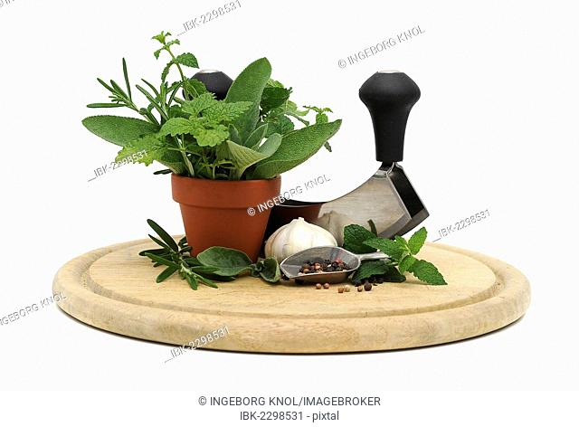 Mezzaluna or herb chopper, herbs, spices and garlic on a wooden board