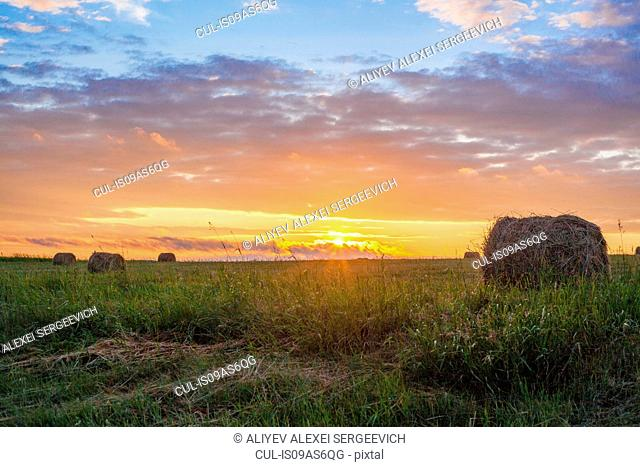 Field landscape with hay bales at sunset