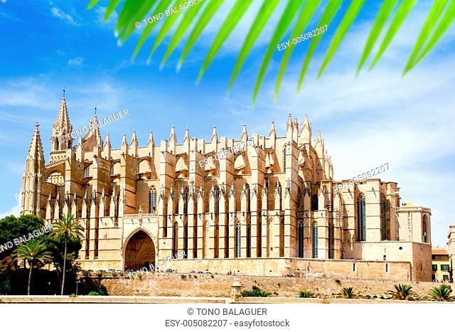 Cathedral of Majorca La seu from Palma de Mallorca