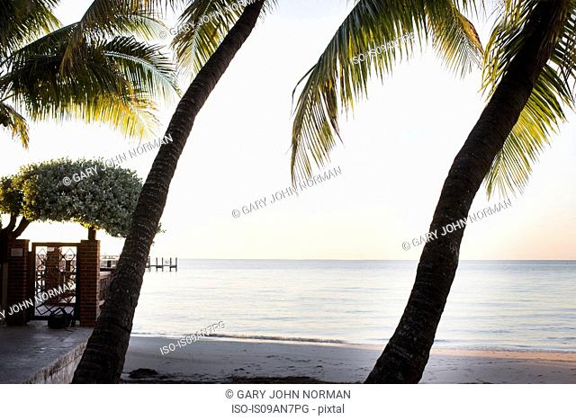 Sandy beach, Islamorada, Florida Keys, USA