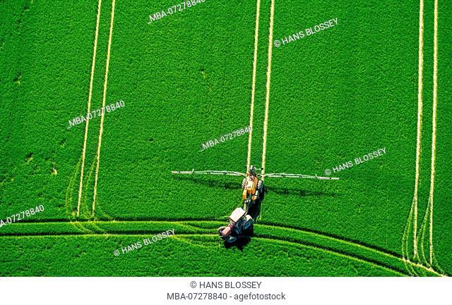 Tractor spraying pesticides on a green cornfield, agriculture, Warstein, Sauerland, North Rhine-Westphalia, Germany, Europe