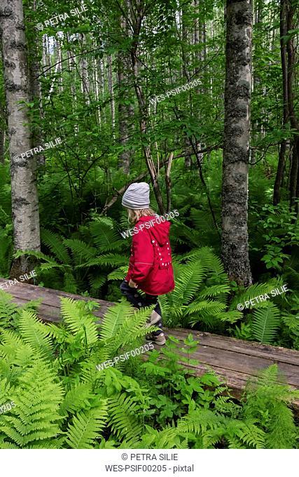 Finland, Kuopio, girl walking in a birch forest