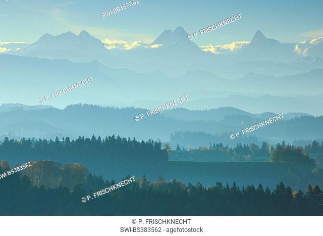 view onto Emmental, Wetterhorn, Lauteraarhorn, Schreckhorn at sunrise, Switzerland