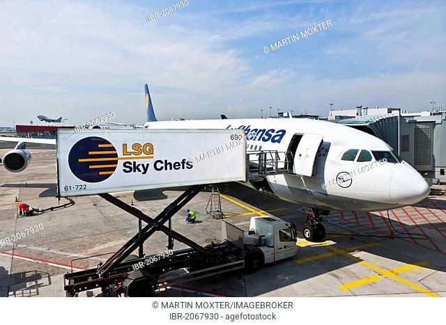 Lufthansa Airbus A340 being loaded by the Sky Chefs at the gate, Frankfurt, Hesse, Germany, Europe