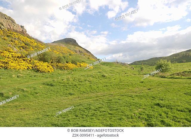 Green landscape near the city of Edinburg, Scotland