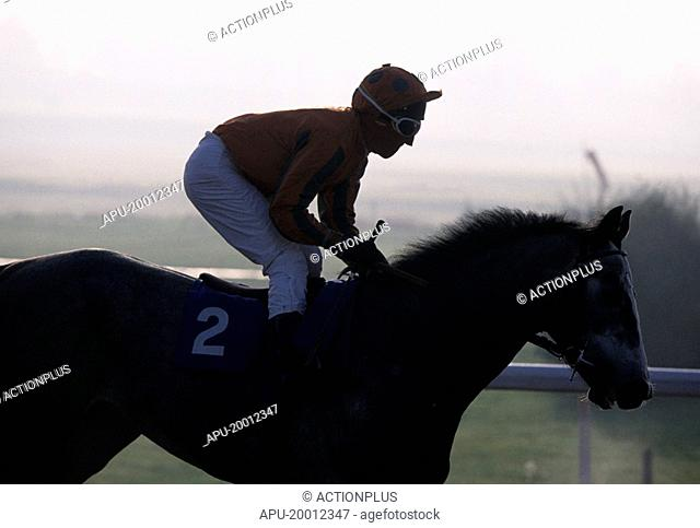 Jockey pulls up his horse at end of horse race