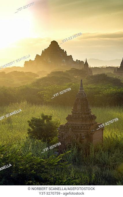 Myanmar (ex Birmanie). Bagan, région de Mandalay. Temple Dhammayangyi / Myanmar (ex Birmanie). Bagan, Mandalay region. Dhammayangyi temple