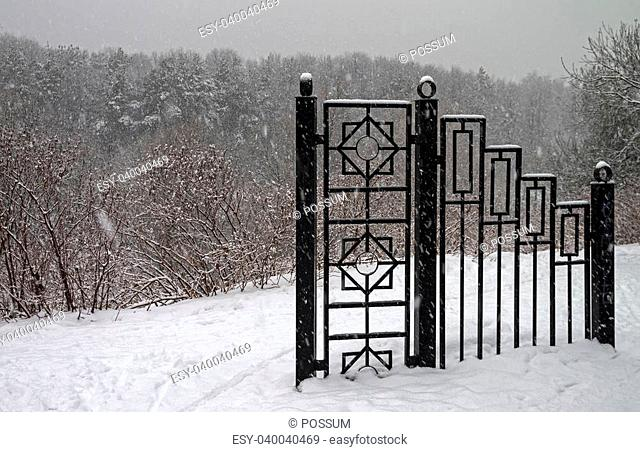 A fragment of an iron fence in a winter park