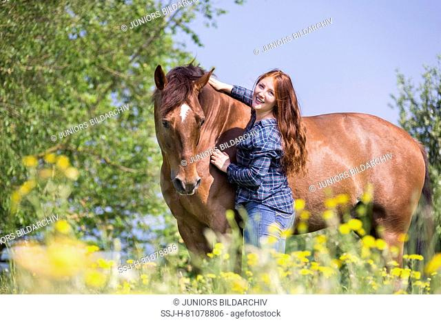 Missouri Fox Trotter. Red-haired young woman with chestnut gelding on a pasture. smooching. Switzerland