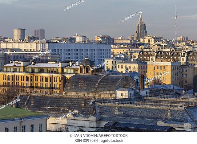 Cityscape, roof of Pushkin Museum, Moscow, Russia