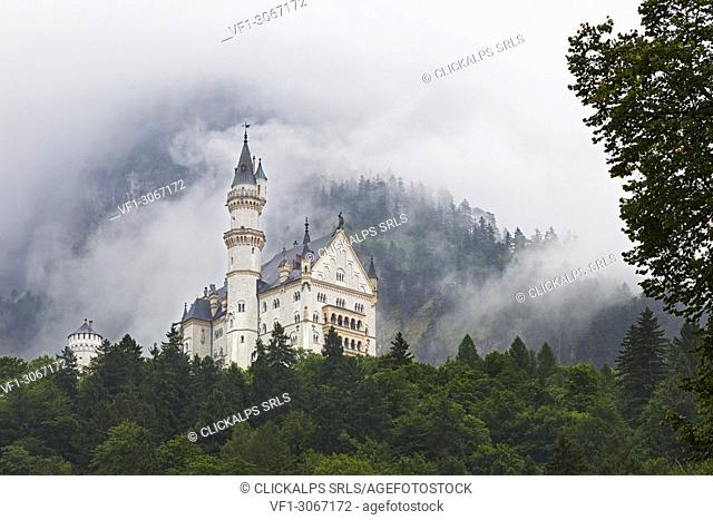 Neuschwanstein Castle, Schwangau, Ostallgäu, Schwaben district, Bavaria, Germany, Europe