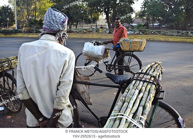 Two street vendors are talking together. One is selling sugarcanes, the other one is selling vegetables ( Raipur, India)