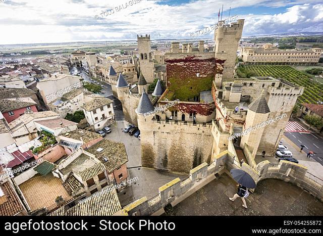 castillo palacio de Olite, comunidad foral de Navarra, Spain