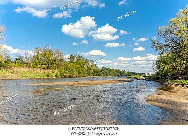 Vistula riverbank in Lawice Kielpinskie nature reserve near Kepa Kielpinska, Poland