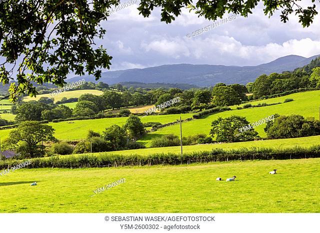 Landscape near Conwy, Wales; United Kingdom, Europe