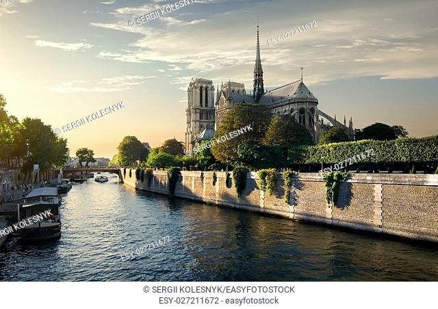 Notre Dame de Paris on Seine in the morning, France