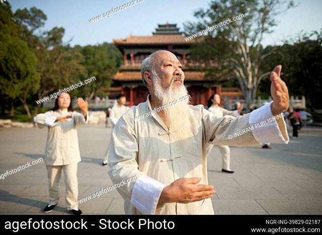 Chinese Practicing Tai Ji