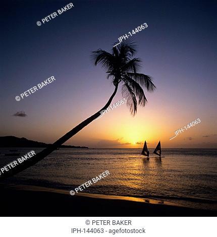 Grenada - Windsurfing off Grand Anse Beach at sunset