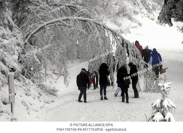 06 January 2019, Baden-Wuerttemberg, Seebach: At Mummelsee in the Black Forest, hikers walk along a path where a tree bends to the ground due to its snow load